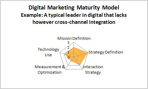 Digital-marketing maturity model example - digital leader